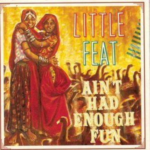 Image for 'Ain't Had Enough Fun'