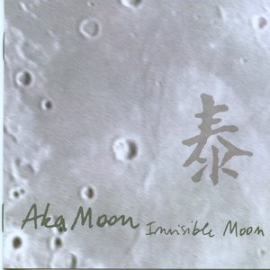 Image for 'Invisible Moon'