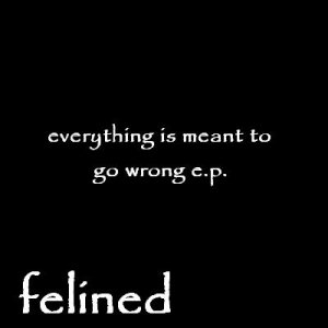 Image for 'everything is meant to go wrong e.p.'