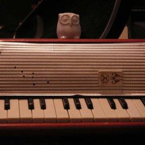 Bild för 'parliament of owls'