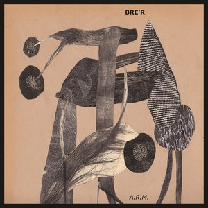 Image for 'A.R.M.'