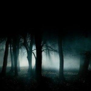 Image for 'Spellforest'