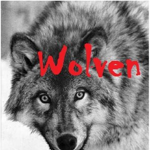 Image for 'WolveN'