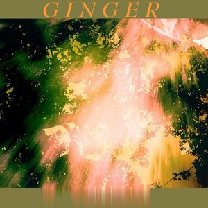 Image for 'Ginger - When Will They Open Their Eyes'