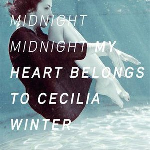 Bild für 'Midnight Midnight'