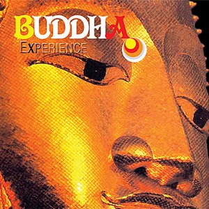 Image for 'Buddha Experience'