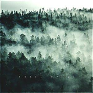 Immagine per 'White Walls'