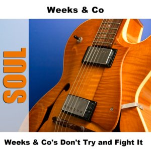 Image for 'Weeks & Co's Don't Try and Fight It'