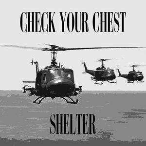 Image for 'Shelter'