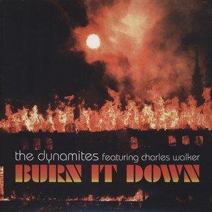 Immagine per 'Burn It Down'