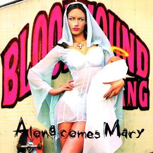 Image for 'Along Comes Mary'