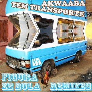 Immagine per 'Ze Bula Remixes'