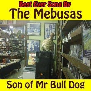 Image for 'Son of Mr. Bull Dog'