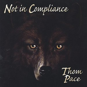 Image for 'Not In Compliance'