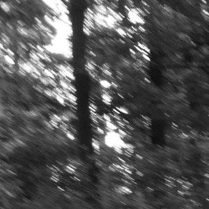Image for 'Presence Loop'