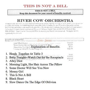 Image for 'This Is Not a Bill'