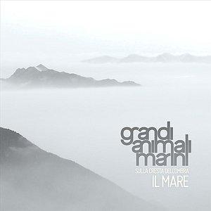 Image for 'Il Mare'