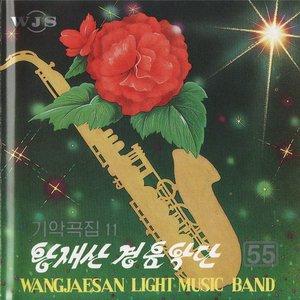 Image for 'Wangjaesan Light Music Band'