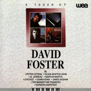Image for 'A Touch of David Foster'