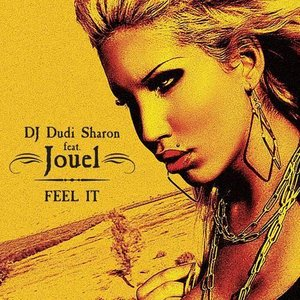 Image for 'dj dudi sharon feat. jouel'