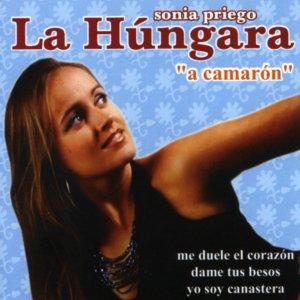 Image for 'A Camarón'