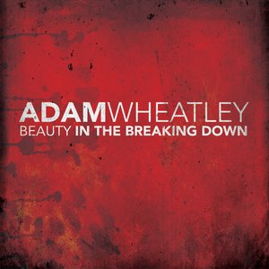 Image for 'Beauty In The Breaking Down'