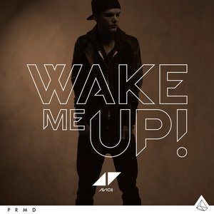 Image for 'Wake Me Up (Avicii Speed Remix)'