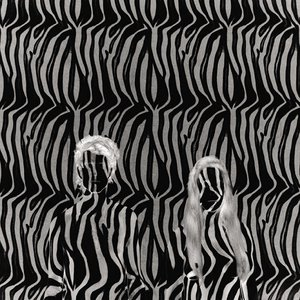 Image for 'Zebra'