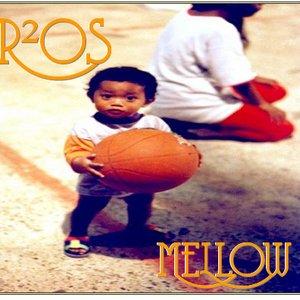 Bild för 'R2OS'