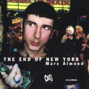 Image for 'The End of New York'