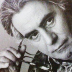 Bild für 'Khosro Shakibaei'
