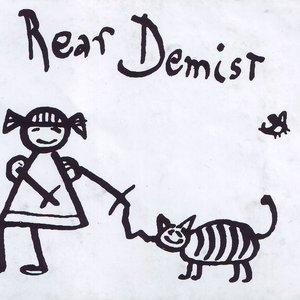 Image for 'rear demist'