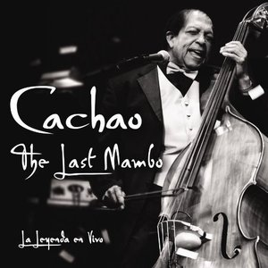 Image for 'The Last Mambo'
