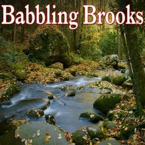 Image for 'Peaceful Free Flowing Brook'