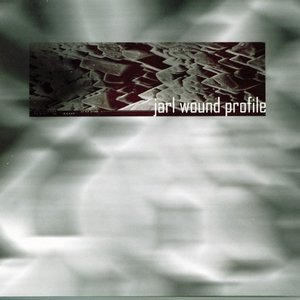 Image for 'Wound Profile'