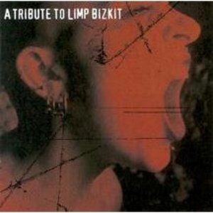 Bild för 'A Tribute To Limp Bizkit'