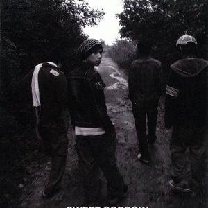 Image for 'Sweet Sorrow 1'