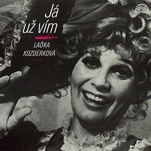 Image for 'Já už vím (výběr) + bonus (nahrávky z let 1961-71)'