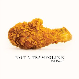 Image for 'Not A Trampoline'