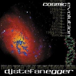 Image for 'Cosmic Evolution'