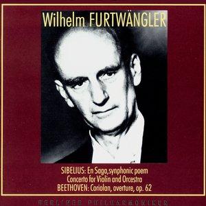 Image for 'J.Sibelius. Violin Concerto in D minor, Op.47. II - Adagio di molto'
