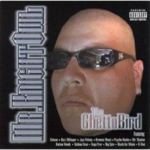 Bild för 'The Ghetto Bird'