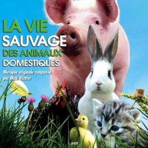 Image for 'La vie sauvage des animaux domestiques'