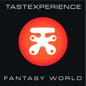 Image for 'Fantasy World'