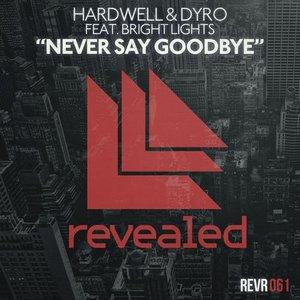 Imagen de 'Never Say Goodbye'