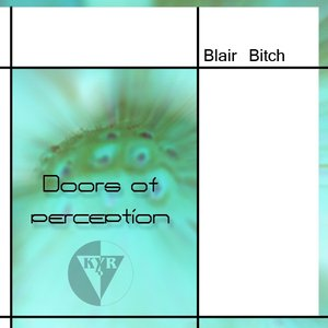 Imagen de 'Doors of Perception'