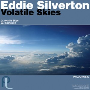Image for 'Volatile Skies'