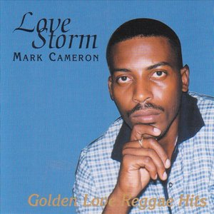 Image for 'Love Storm'
