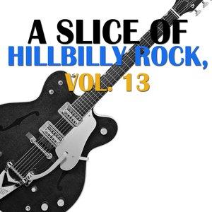 Image for 'A Slice of Hillbilly Rock, Vol. 13'