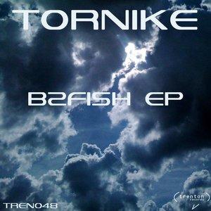 Image for 'B2Fish EP'